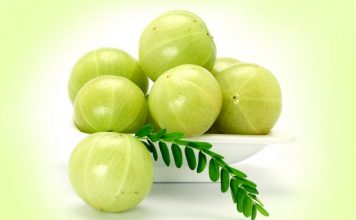 amazing amla indian